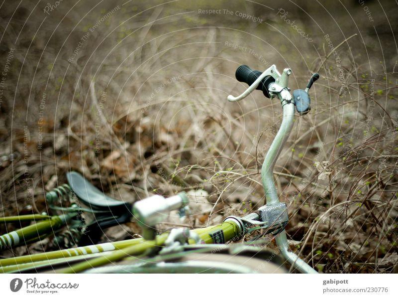 KAmiKAze - Fahrt grün braun liegen kaputt trist Sträucher fallen Sturz trashig Unfall Desaster Frustration Schrott Fahrradsattel Fahrradlenker Müll