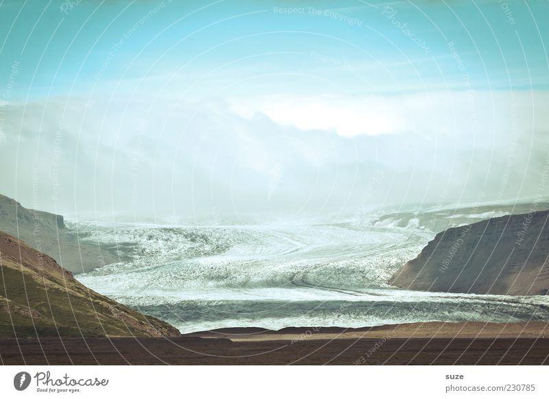 Gletscherzunge Freiheit Berge u. Gebirge Umwelt Natur Landschaft Urelemente Erde Himmel Klima Klimawandel Schönes Wetter Eis Frost Wiese Gipfel außergewöhnlich