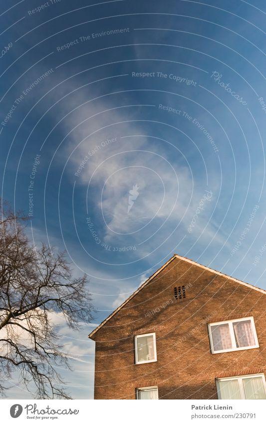 Draussen hinterm Fenster Umwelt Urelemente Luft Himmel Wolken Sonnenlicht Klima Wetter Schönes Wetter Pflanze Baum Haus Einfamilienhaus Bauwerk Gebäude Mauer