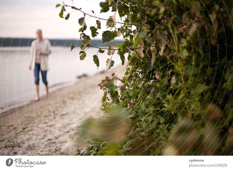 Strandspaziergang Frau Mensch Natur Ferien & Urlaub & Reisen Sommer ruhig Einsamkeit Erwachsene Erholung Leben Umwelt Landschaft Bewegung See Horizont
