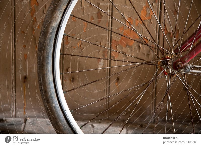 Diamant von vorn Teil II Fahrrad alt braun rot Vergänglichkeit Farbfoto Reifen speichen Rost Detailaufnahme Bildausschnitt Fahrradreifen fahrradspeichen