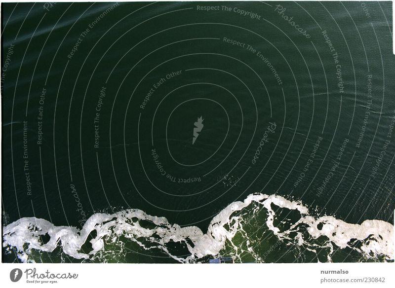 Aufschäumend Natur Umwelt Bewegung Wellen nass Ostsee Wasser abstrakt Wasseroberfläche Gischt Muster