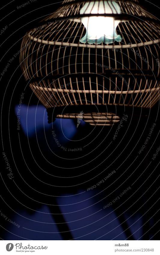 Light Cage Dekoration & Verzierung Holz Glas leuchten ästhetisch hell einzigartig blau weiß Vogelkäfig Lampe Farbfoto Außenaufnahme Abend Licht außergewöhnlich