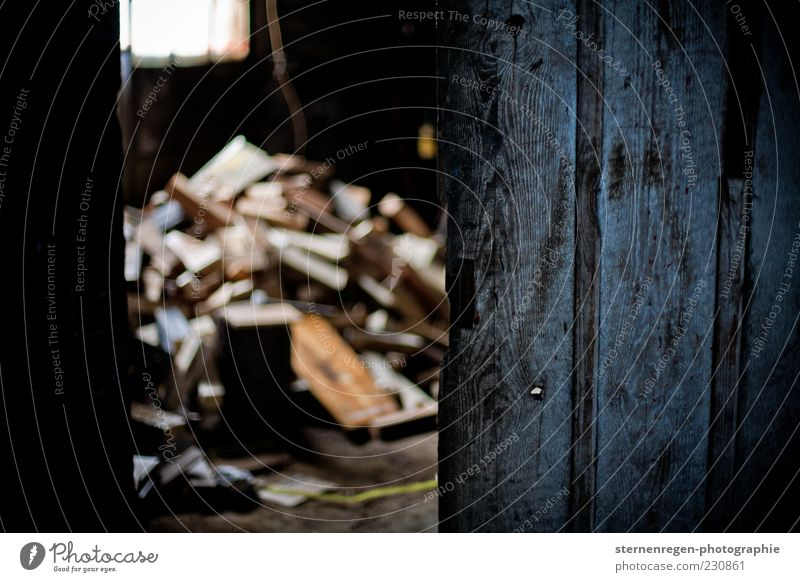 Cellar Door II alt Keller Holz Holztür Kellertür dunkel Abend Low Key Schwache Tiefenschärfe Brennholz Stapel Gebäude Menschenleer offen Haufen
