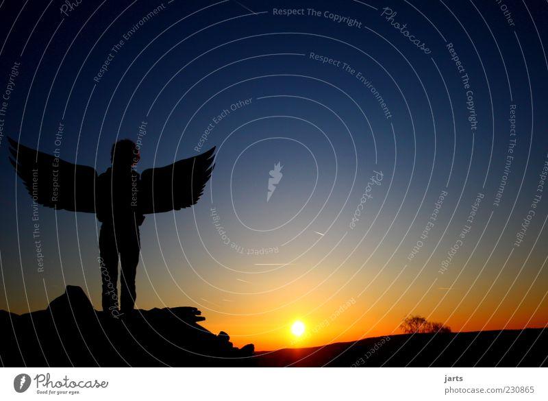 engel 1 Mensch Himmel Sonne Sonnenaufgang Sonnenuntergang Schönes Wetter beobachten Blick warten Gefühle Optimismus Vertrauen Schutz Opferbereitschaft dankbar