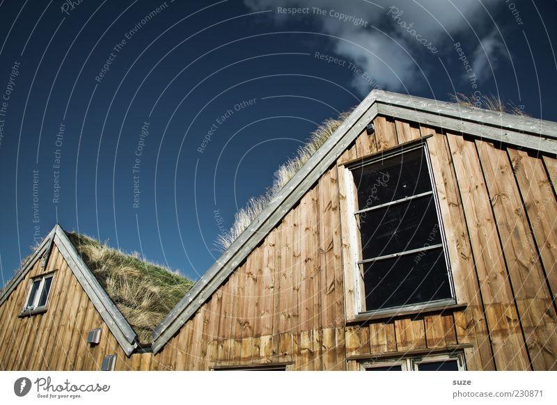 Kiffhäuser Häusliches Leben Wohnung Haus Umwelt Natur Urelemente Luft Himmel Klima Schönes Wetter Gras Hütte Fassade Fenster Dach außergewöhnlich lustig
