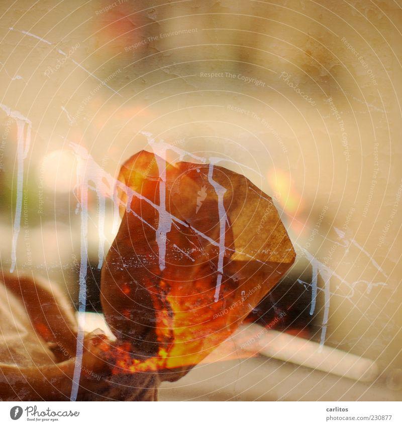 Neues aus Merkwürdigstan weiß Farbe orange braun Hintergrundbild laufen Papier Doppelbelichtung Glut sinnlos Schmiererei schemenhaft Pergamentpapier