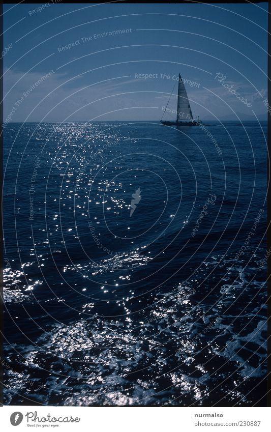 dark Sail Natur schön Meer Ferne Landschaft Freiheit Bewegung Stil Stimmung Wellen Horizont Freizeit & Hobby elegant natürlich Klima Lifestyle