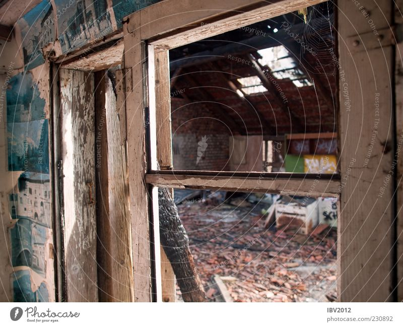 Zimmer mit Aussicht Haus Hütte Ruine Fenster Dach alt Armut kalt Verfall verfallen Bild schäbig Einsturzgefahr Fensterrahmen Müll Zerstörung Farbfoto