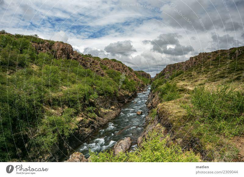 Schlucht Landschaft Pflanze Himmel Wolken Horizont Frühling Schönes Wetter Gras Sträucher Felsen Berge u. Gebirge Flussufer wild blau braun gelb grün weiß