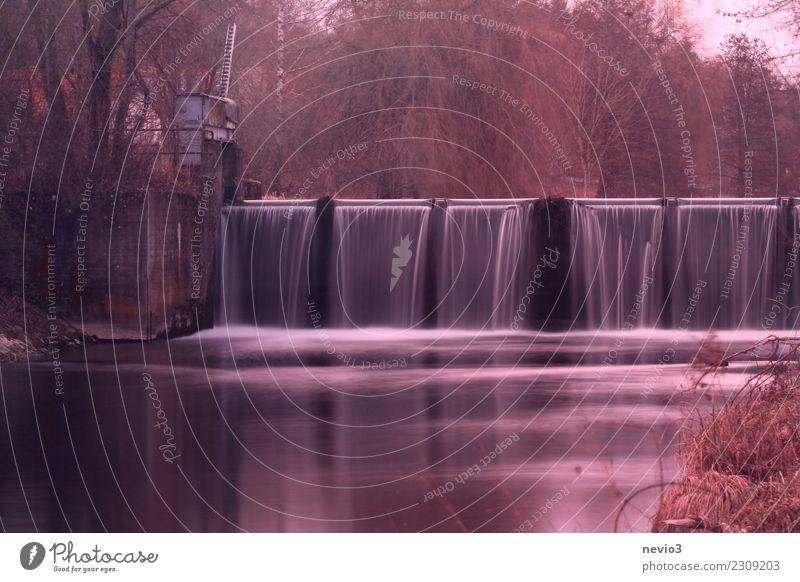 Fließender Übergang Umwelt Natur Landschaft Bach Fluss Wasserfall fallen ästhetisch rot fließen Staustufe Herbst ruhig Erholung herbstlich Langzeitbelichtung