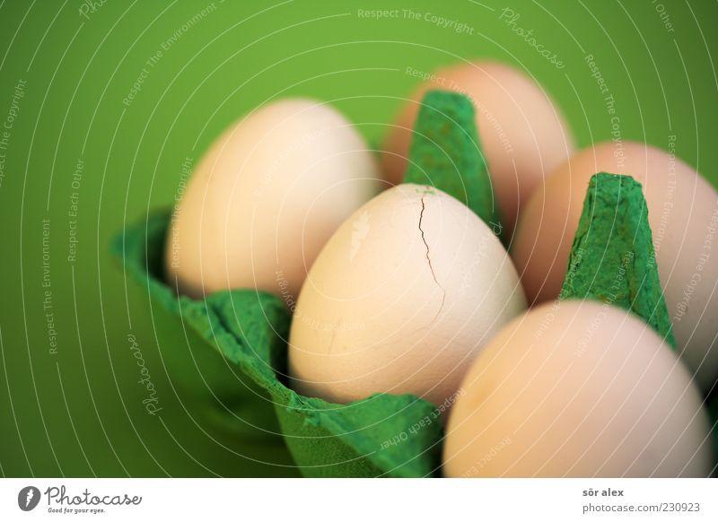 Ei-kaputt grün Foodfotografie Lebensmittel frisch Ernährung rund Schutz Bioprodukte Riss Stillleben Zerstörung hart Hülle zerbrechlich