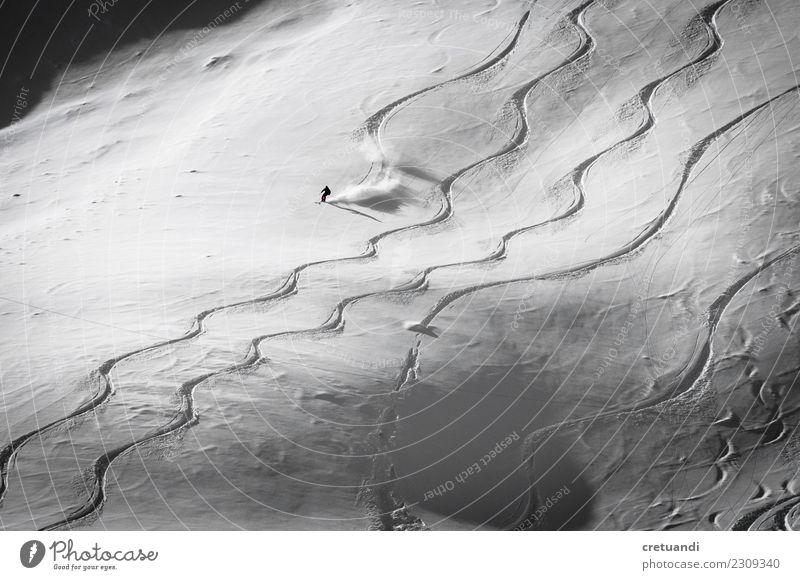 Mensch schön weiß Freude Winter Berge u. Gebirge lustig Schnee Bewegung Glück Kraft authentisch Erfolg Macht Schneebedeckte Gipfel sportlich