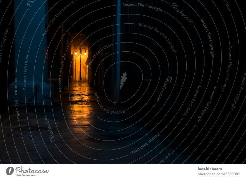 Latern trough darkness Ferien & Urlaub & Reisen Hintergrundbild Angst Todesangst Straßenbeleuchtung Asphalt Asien Island Nachtleben Großstadt Gateway Arch