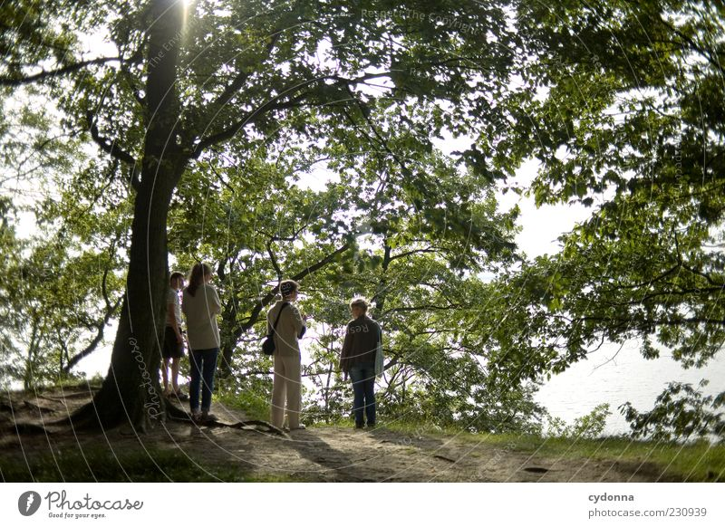 Zusammen ins Grüne Mensch Natur Jugendliche Baum Blatt Erwachsene Wald Ferne Erholung Umwelt Leben Freiheit Bewegung Wege & Pfade Menschengruppe Freundschaft