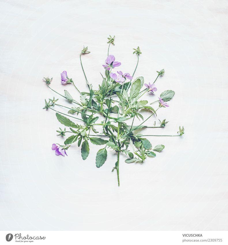 Stiefmütterchen Blumenbündel Natur Pflanze Sommer grün weiß Blatt Freude Blüte Stil rosa Design Dekoration & Verzierung violett Blumenstrauß Entwurf