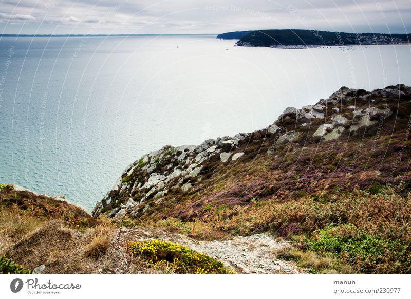 Am Zöllnerpfad Natur Landschaft Urelemente Erde Wasser Sträucher Hügel Felsen Küste Riff Meer Klippe Bretagne Reisefotografie authentisch fantastisch schön