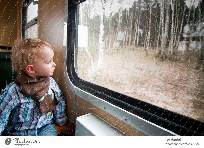 Ein Zugfahrt, die ist lustig. Mensch Kind Ferien & Urlaub & Reisen Freude Wald Junge Bewegung Glück Kindheit blond Ausflug maskulin Tourismus Eisenbahn Abteilfenster fahren