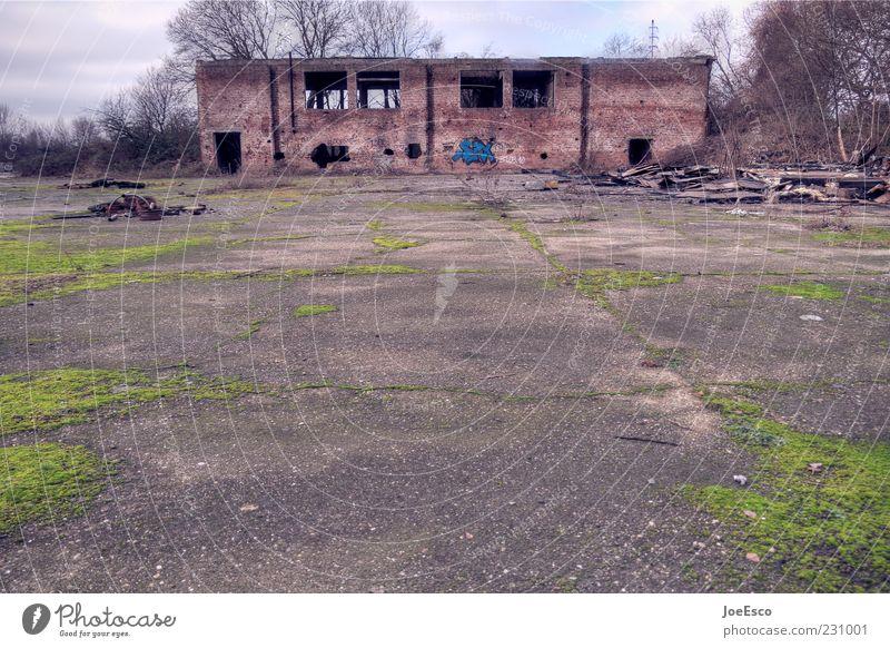 location usertreffen ffm Himmel Pflanze Haus Gebäude kaputt Wandel & Veränderung Vergänglichkeit Bauwerk verfallen Verfall schäbig Ruine Moos Unbewohnt