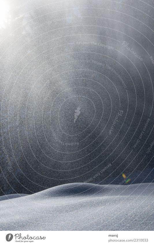 Licht und Schatten harmonisch Sinnesorgane Erholung ruhig Meditation Winter Schnee Winterurlaub Natur Eis Frost Schneefall dunkel kalt rund Reinheit