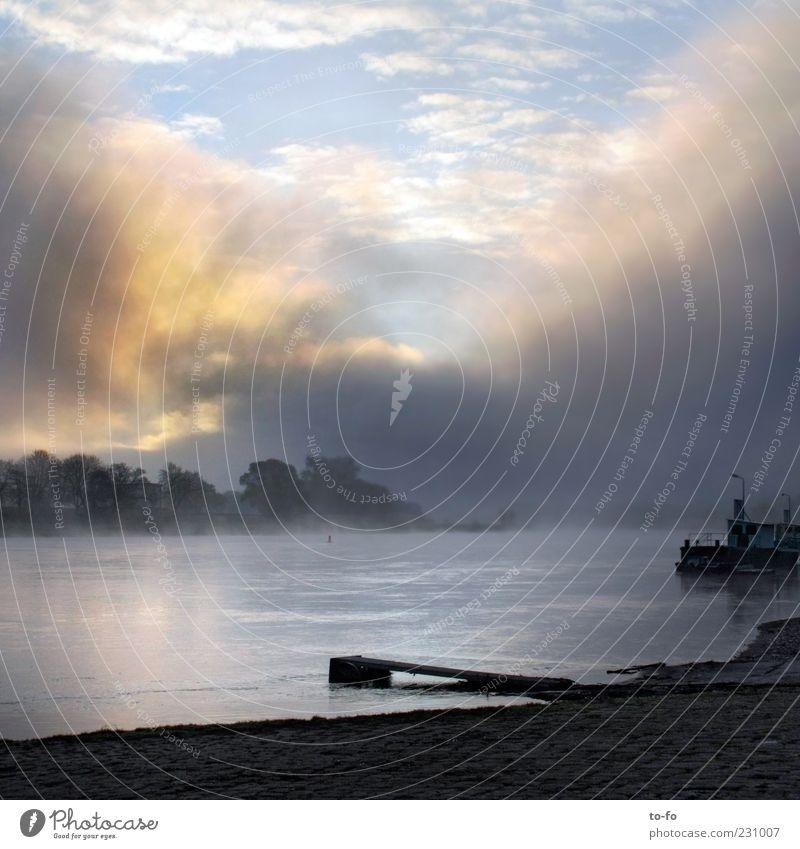 Elbe am Morgen Umwelt Landschaft Wasser Himmel Wolken Sonnenlicht Nebel Flussufer Erwartung Hoffnung Stimmung Farbfoto Außenaufnahme Menschenleer Licht