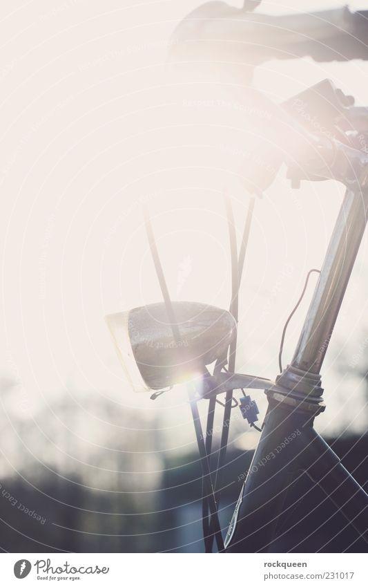 Sonnenrad Verkehrsmittel Fahrrad fahren Farbfoto Außenaufnahme Nahaufnahme Detailaufnahme Textfreiraum links Textfreiraum oben Tag Licht Silhouette