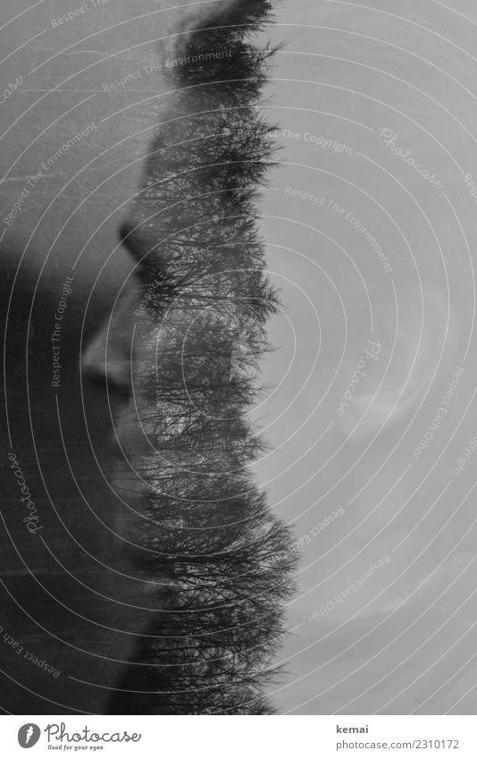 Gedankenwelt Lifestyle Stil Sinnesorgane ruhig Abenteuer Ferne Freiheit Mensch feminin Frau Erwachsene Leben Kopf 1 30-45 Jahre Natur Baum Wald Denken Blick