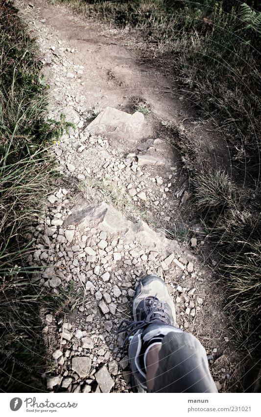 weitergehen Natur Pflanze Bewegung Gras Wege & Pfade Beine Fuß Schuhe gehen Felsen laufen wandern Ausflug authentisch Sträucher Ziel