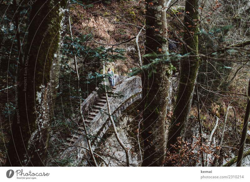 Auf der Teufelsbrücke Lifestyle Erholung ruhig Freizeit & Hobby Ausflug Abenteuer Freiheit Winter Mensch feminin Frau Erwachsene Leben 1 Landschaft Baum Wald