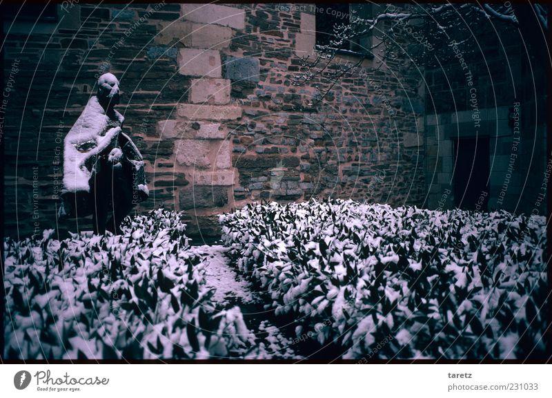 Der einsame König alt Winter Einsamkeit kalt Schnee Garten Traurigkeit Fassade warten trist Sträucher historisch Statue frieren König Aufenthalt