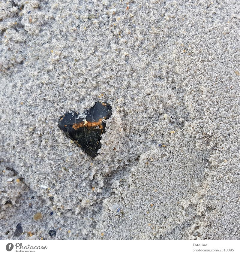 Natürlich von Herzen Umwelt Natur Urelemente Erde Sand Küste Strand nah nass natürlich braun grau schwarz Stein herzförmig steinig Farbfoto Gedeckte Farben