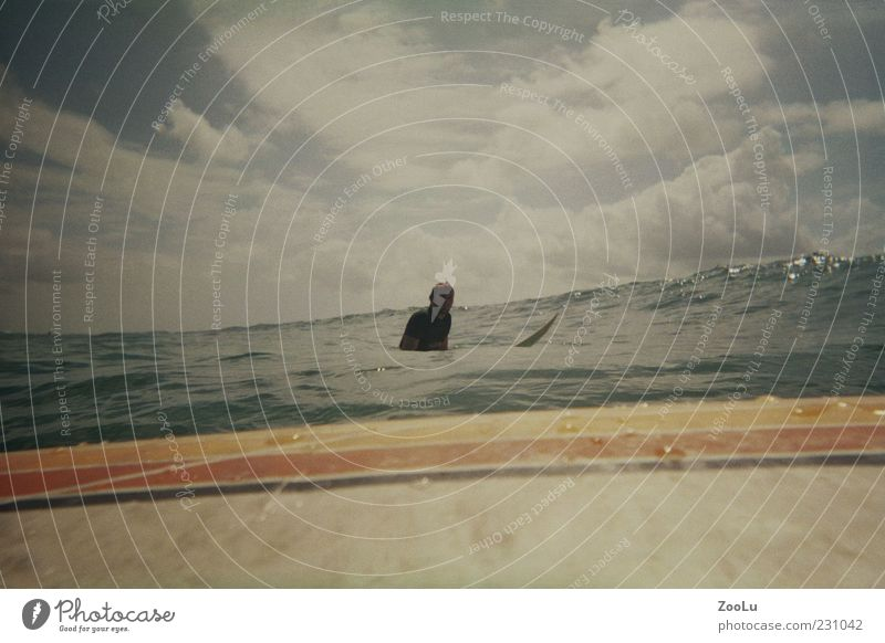 Surfpartner Freude Meer Mensch Wasser frei Surfen Farbfoto Außenaufnahme Surfbrett Wasseroberfläche Wellen Silhouette Wolkenhimmel Textfreiraum oben