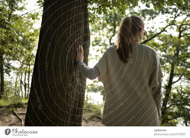Halt geben Mensch Natur Baum ruhig Einsamkeit Wald Erholung Leben Umwelt Gefühle träumen Zeit Ausflug Vergänglichkeit berühren Wohlgefühl