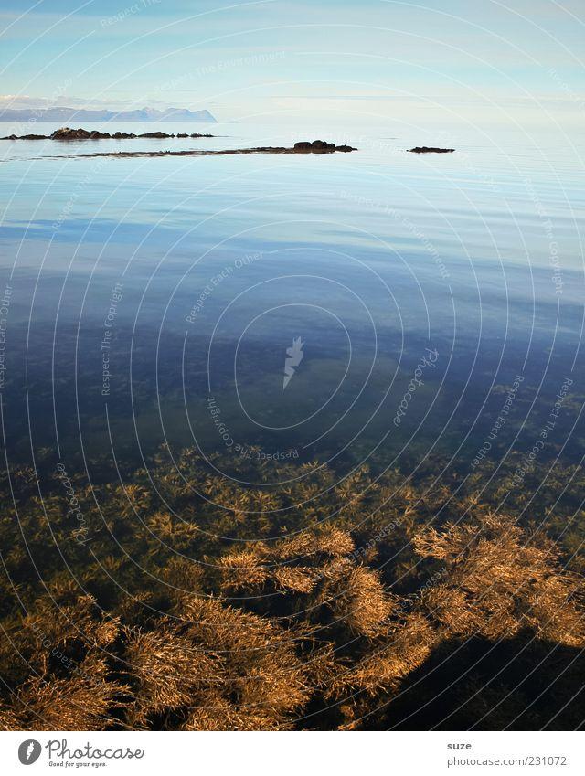 Durchsicht Umwelt Natur Landschaft Urelemente Wasser Himmel Wolkenloser Himmel Horizont Sommer Klima Küste Riff Meer kalt schön blau Zufriedenheit Einsamkeit