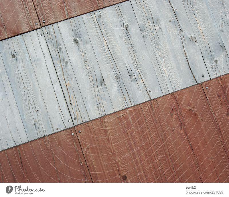 Strukturwandel Gebäude Mauer Wand Holz ästhetisch einfach hell trist grau Ordnungsliebe Design einzigartig Holzwand Linie Maserung Astloch Oberflächenstruktur