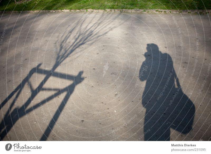 Transparenz 1 Mensch einzigartig Fotograf Fotografie Park Bürgersteig Rasen Baum Schatten Schattenspiel Farbfoto Außenaufnahme Experiment Textfreiraum oben Tag
