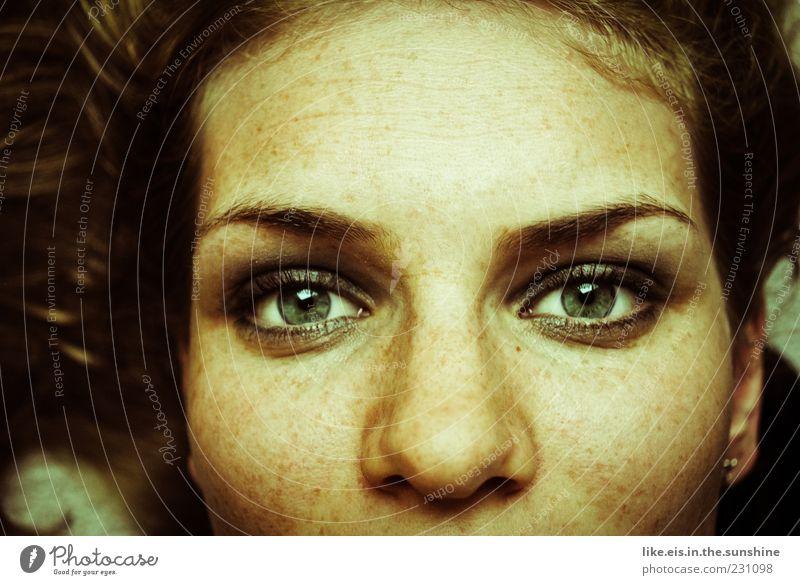 schau mir in die augen, großer feminin Junge Frau Jugendliche Kopf Haare & Frisuren Gesicht Auge Nase Augenbraue 1 Mensch 18-30 Jahre Erwachsene brünett liegen