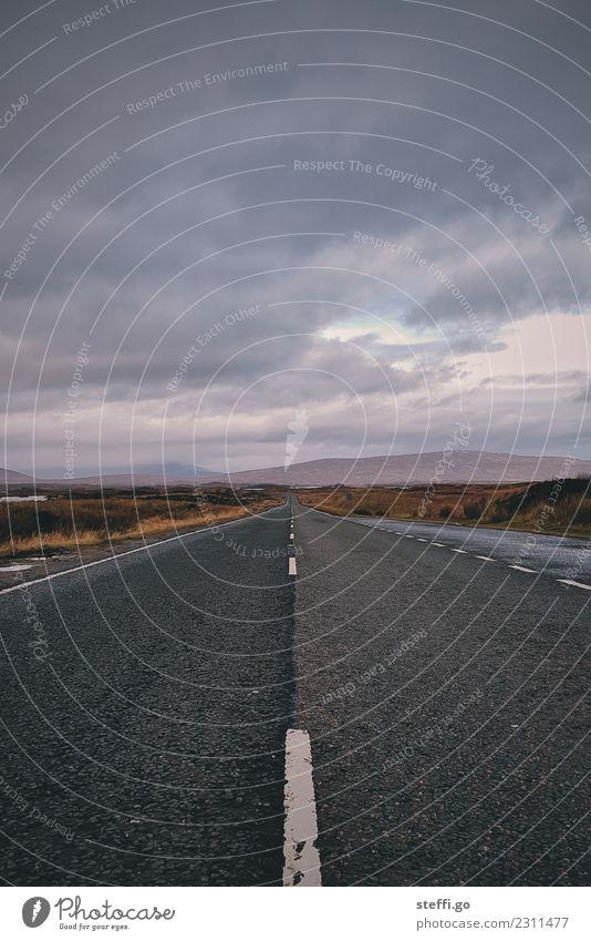 endlose Straße Natur Ferien & Urlaub & Reisen Landschaft Einsamkeit Ferne Berge u. Gebirge Herbst Wege & Pfade Tourismus Freiheit Ausflug Horizont Abenteuer
