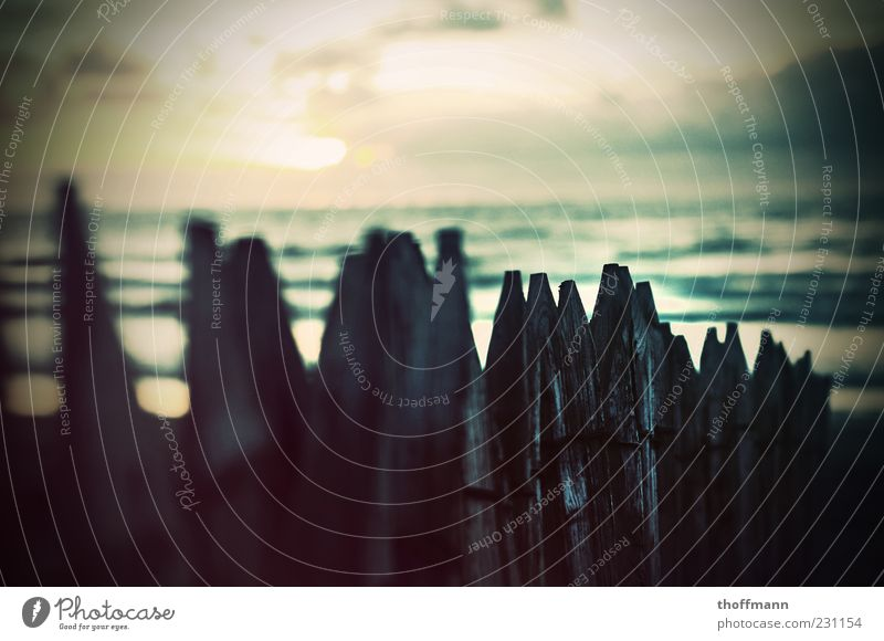 Build a fence... Himmel Natur Wasser Ferien & Urlaub & Reisen Sommer Meer Strand Erholung Umwelt Holz Küste Wellen Spitze Schönes Wetter Zaun Ostsee