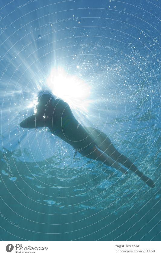 SHARK VIEW Perspektive Ferien & Urlaub & Reisen Frau Schwimmen & Baden Im Wasser treiben Meer Gegenlicht Sonne Sonnenstrahlen Luftblase Silhouette Lichtstrahl