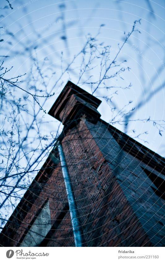 Eckhaus Frühling Winter Pflanze Sträucher Haus Industrieanlage Fabrik Bauwerk Gebäude Architektur Mauer Wand Fassade Dachrinne dreckig dunkel groß gruselig
