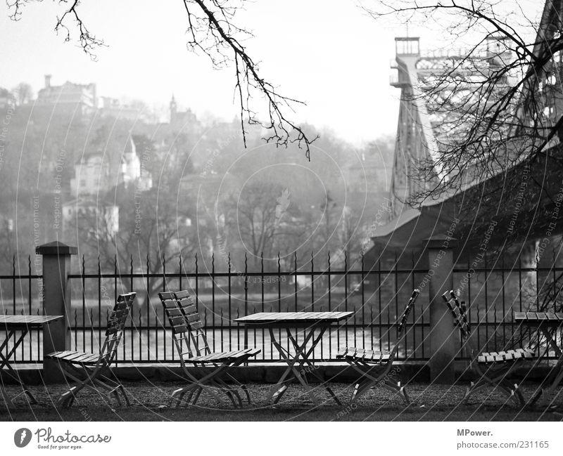 Elbblick Wasser Stadt Holz grau Stein Gebäude Brücke trist Stuhl Spitze Ast Fluss Gastronomie Geländer Dresden Zaun