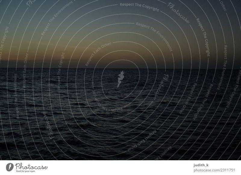 Dämmerung karibisches Meer Schwimmen & Baden Ferien & Urlaub & Reisen Abenteuer Ferne Strand Umwelt Natur Wasser Himmel Horizont Sonnenaufgang Sonnenuntergang