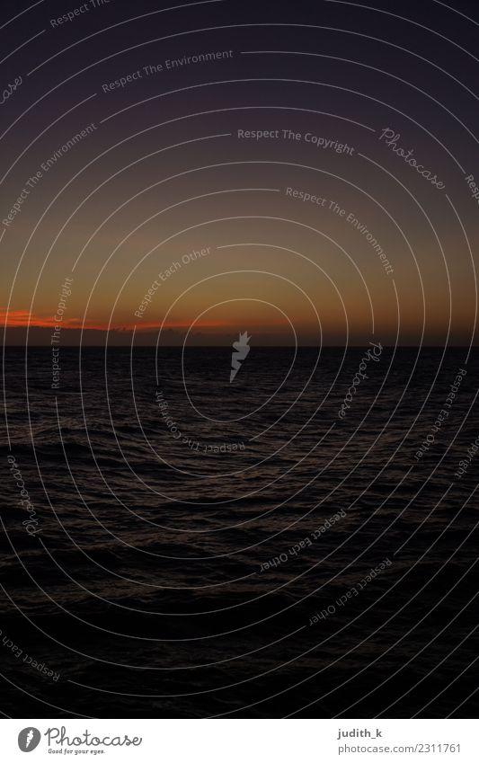 Sonnenuntergang in der Karibik Himmel Natur Ferien & Urlaub & Reisen Wasser Meer Ferne Strand dunkel Umwelt Küste Tourismus Freiheit Ausflug Horizont Wellen