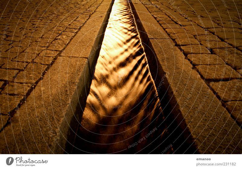 Bächle Wasser Bach Wege & Pfade Stein Bewegung dunkel kalt fließen Fluchtlinie Fluchtpunkt Pflastersteine Bordsteinkante Kanal Kanalisation Wasserrinne gold