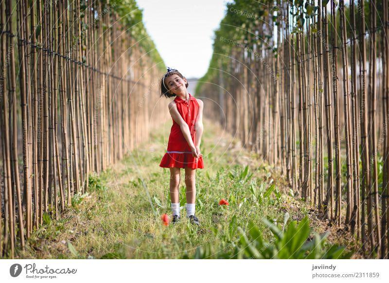 Kleines Mädchen im Naturfeld mit schönem Kleid Lifestyle Freude Glück Sommer Kind Mensch Baby Frau Erwachsene Kindheit 1 3-8 Jahre Blume Gras Wiese Mode Lächeln