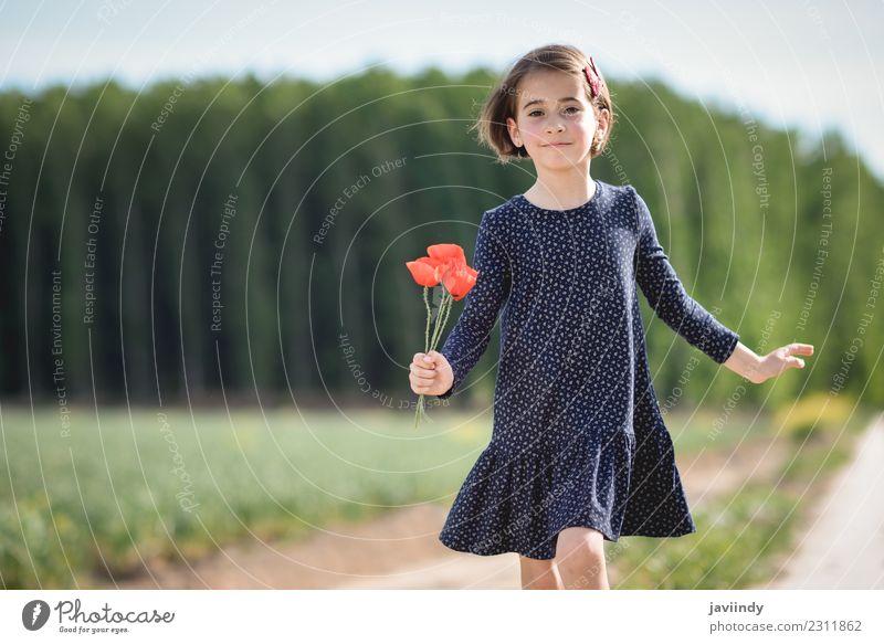 Kleines Mädchen in der Natur im Kleid mit Mohn in der Hand. Lifestyle Freude Glück schön Spielen Sommer Kind Mensch Frau Erwachsene Kindheit 1 3-8 Jahre Blume