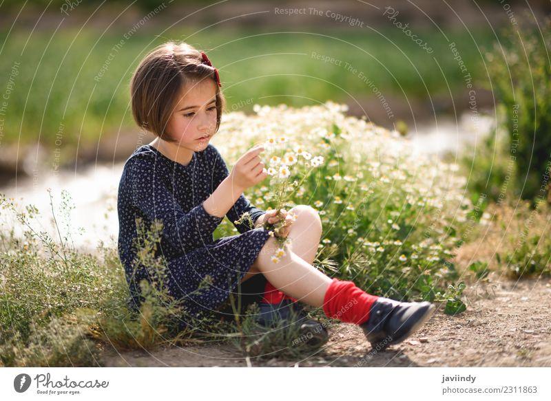Kleines Mädchen, das in der Natur sitzt und Blumen in der Hand hält. Lifestyle Freude Glück schön Spielen Sommer Kind Mensch Frau Erwachsene Jugendliche 1