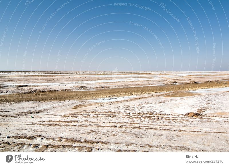 Ausserirdisch Umwelt Natur Landschaft Erde Himmel Schönes Wetter Dürre Wüste Tunesien dehydrieren heiß trocken Einsamkeit Endzeitstimmung Horizont Ferne Salz