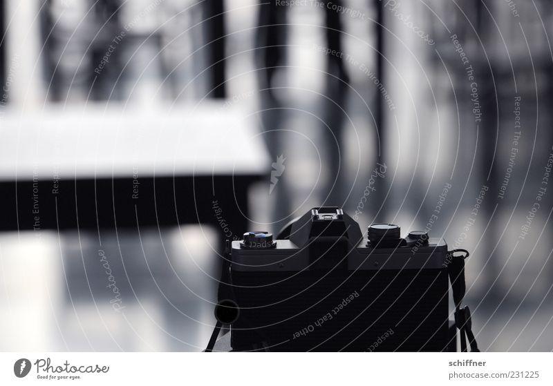 KAmiKAze - analog schwarz grau Fotografie Fotokamera Fotografieren Photo-Shooting Spiegelreflexkamera